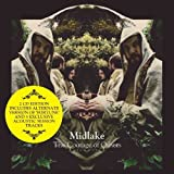 Courage of Others: Special Edition by Midlake (2010-11-02)