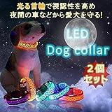 STARDUST 光る首輪 犬 ペット 夜間 散歩 安全 対策 事故防止 視認性 (Sサイズ) SD-HIKAKUBI-S