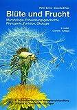 Image de Blüte und Frucht: Morphologie, Entwicklungsgeschichte, Phylogenie, Funktion und Ökologie