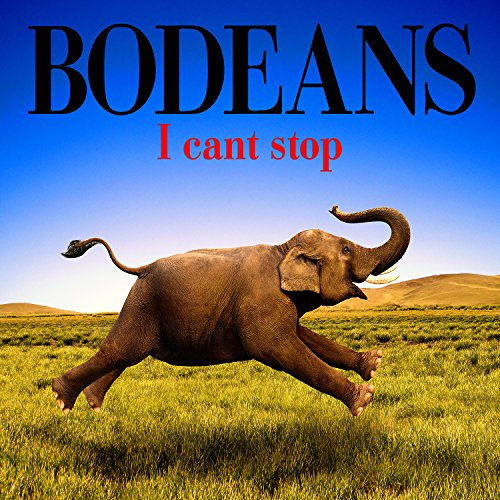 Original album cover of I Can't Stop by BoDeans