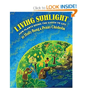 Living Sunlight: How Plants Bring The Earth To Life