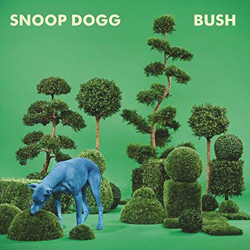 Bush-vinile-blu