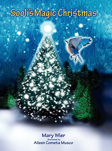 Sooli's Magic Christmas