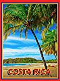Costa Rica Beach Surf Ocean Palm Central America Travel Poster Advertisement
