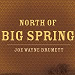 North of Big Spring | Joe Wayne Brumett