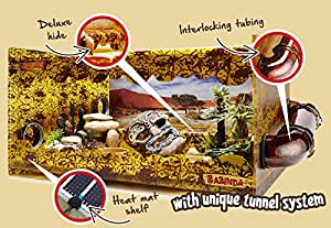 Gecko Vivarium: COMES WITH EVERYTHING YOU NEED EXCEPT YOUR GECKO
