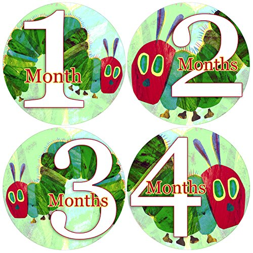 Baby Month Onesie HUNGRY CATERPILLAR, Stickers Baby Shower Gift Photo Shower Stickers Baby Photo Onesie Milestone Stickers