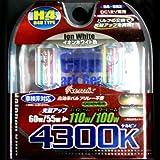 REMIX [ レミックス ] スパークビーム イオンホワイト H4U 4300K [ 品番 ] RS892