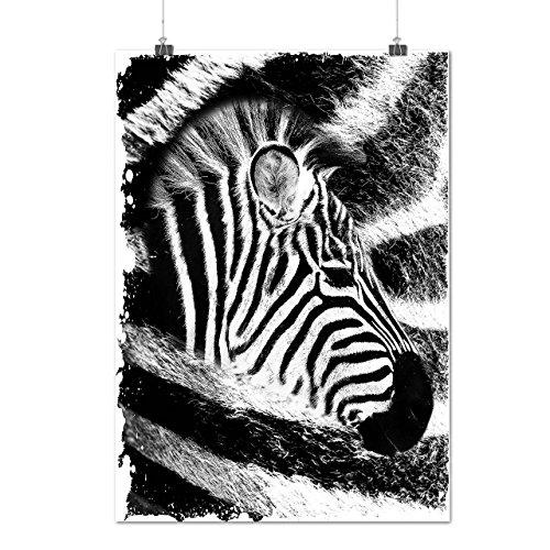 africain Zèbre Tête Afrique La vie Matte/Glacé Affiche A0 (119cm x 84cm) | Wellcoda