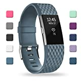 POY Replacement Bands Compatible for Fitbit Charge 2, Classic & Special Edition Sport Wristbands, Slate Large, 1PC