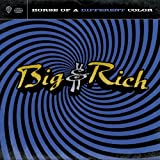 Horse of a Different Color ~ Big & Rich