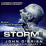 A New World: Storm: Volume 10 | John O'Brien