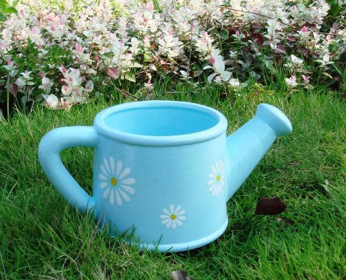 Garden XP Ceramic Daisy Watering Can Planters