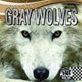 img - for Gray Wolves (Animal Icons) book / textbook / text book