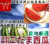 産地から玄関へ 小玉スイカ2玉入り 小玉西瓜種/まなむすめ/ひとりじめ/紅小玉の一番の旬を納品します