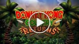 Donkey Kong Country Returns (Rambi)