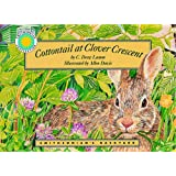 Cottontail At Clover Crescentby Drew Lamm