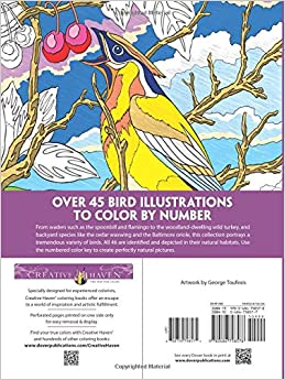 Amazon.com: Creative Haven Birds Color by Number Coloring