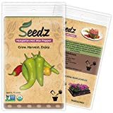 CERTIFIED ORGANIC SEEDS (Apr. 75) - Hungarian Hot Wax Pepper Seeds - Heirloom Vegetable Seeds - Non GMO, Non Hybrid - USA