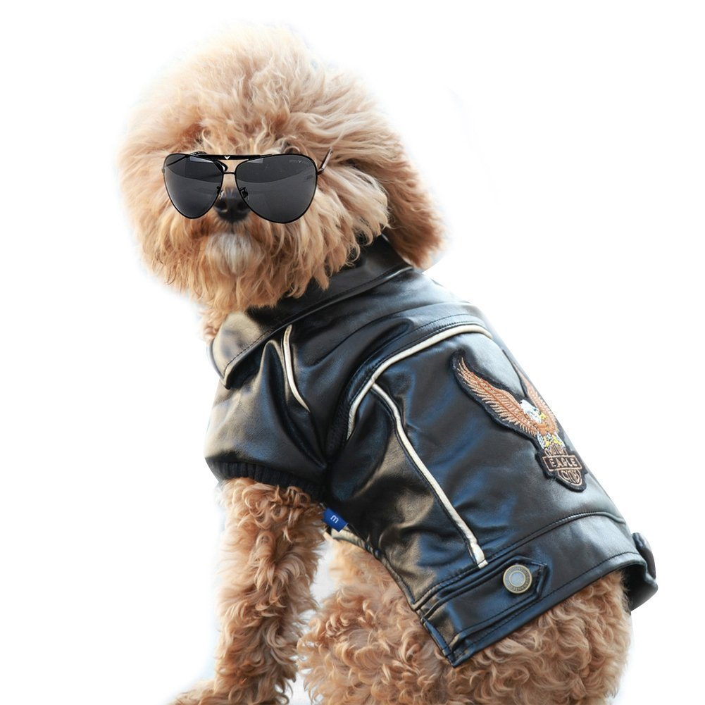 Leather jacket for dogs - Nacoco Tm Pu Leather Motorcycle Jacket Dog Pet Clothes Leather Jacket Watherproof Amazon In Home Kitchen
