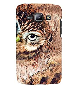 Printvisa Brown Owl Back Case Cover for Samsung Galaxy J2::Samsung Galaxy J2 J200F