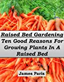 Raised Bed Gardening - Ten Good Reasons For Growing Vegetables In A Raised Bed Garden (Gardening Techniques)