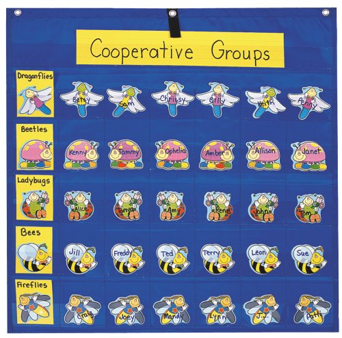 Classroom Management Pocket Chart (Jobs Chart For Classroom compare prices)