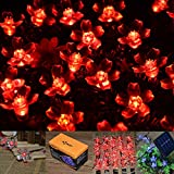 INST Solar Powered 50 LED Peach Blossom/Lotus String Light for Outdoor and Indoor Use (Red)