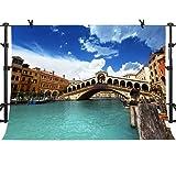 MME 10x7Ft Venice City Photography Background Arch Bridge Backdrop Italian Landmarks Photo Video Studio Props NANME238 (Color: Nanme238, Tamaño: 10x7ft)