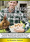 How to Raise Chickens for Eggs: An Essential Guide for Choosing the Best Breeds, Raising and Caring for Your Chickens, and Getting Them to Lay Eggs
