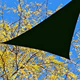 BlueDot Trading Triangle Shade Sail Breathable Mesh, 16.5 by 16.5 by 16.5-Inch, Green