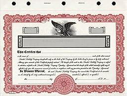 KG9 LLC Stock Certificate Maroon