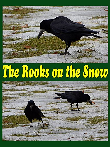 Clip: The rooks on the snow on Amazon Prime Instant Video UK