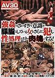 【AV30】強姦のされすぎで意識が朦朧としている女をさらに犯し性処理だけの肉の塊にする!  ダスッ!  [DVD]