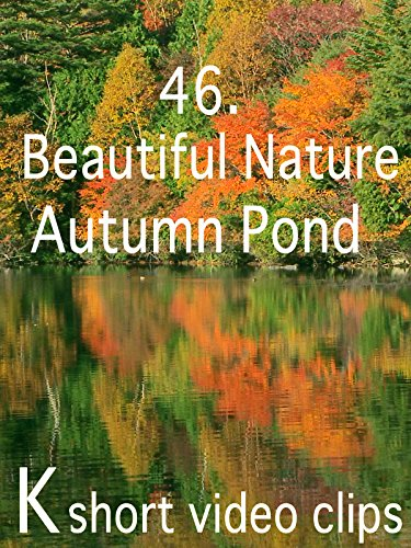 Clip: 46.Beautiful Natutre--Autumn Pond