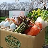 東北牧場 有機野菜8種と卵のお試しセット