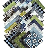 David Butler CURIOUS NATURE Precut 5-inch Cotton Fabric Quilting Squares Charm Pack Masculine Assortment Free Spirit