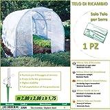 Betty Garden Telo NEW Ricambio per Serra (200 x 300 x h 175 cm) modello Milena - Teli per Serre