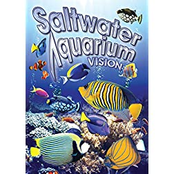 Salt Water Aquarium Vision