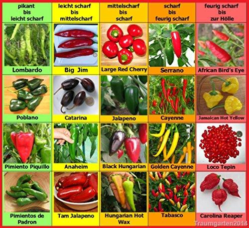 chili gleich peperoni