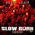 Slow Burn: Torrent: Slow Burn, Book 5 (       UNABRIDGED) by Bobby Adair Narrated by Jason Damron