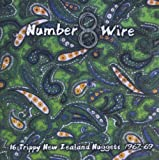 Number 8 Wire: 16 Trippy New Zealand Nuggets