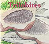 Trilobites (Books for Young Learners)