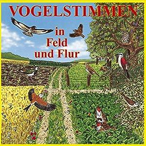 Vogelstimmen in Feld und Flur Hörbuch