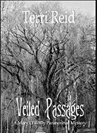 Veiled Passages by Terri Reid ebook deal