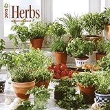 Herbs 2015 Square 12x12