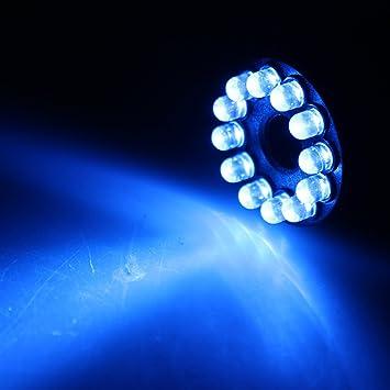 Amazon.com : AGPtek® 12 LED Fountain Mist Maker Light Submersible ...