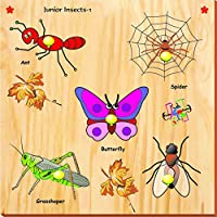 Kinder Creative Junior Insects With Knobs, Brown