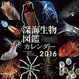 深海生物図鑑 2016年 カレンダー 壁掛け