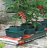 Growbag Pots (Set Of 6)